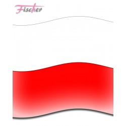 FLAGA 40X30